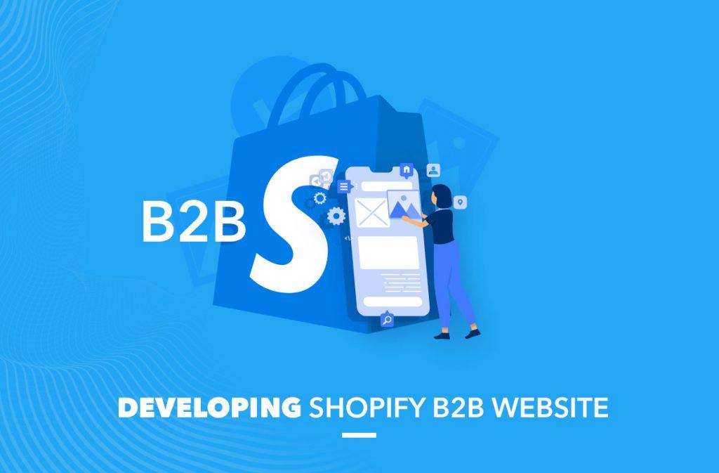 Developing Shopify B2B website
